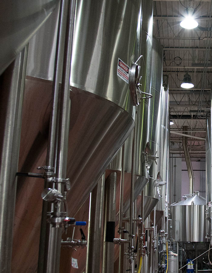 line of fermenters in the brewery